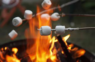 camp, camping, fire, bonfire, smores, marshmallows