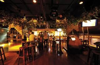 J. Forest Music Bar