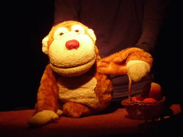 ¿Qué hace un mono en el bosque?