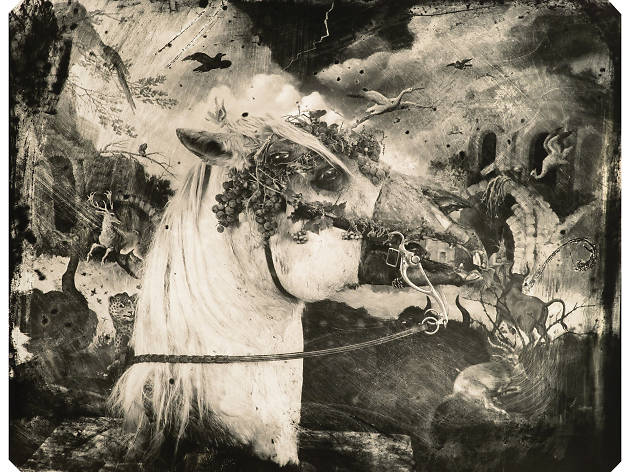 Witkin