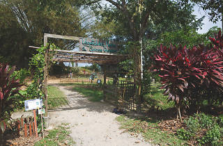 Sensory Trail, Pulau Ubin