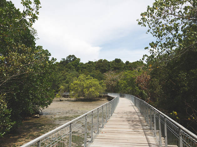 The best nature trails in Singapore