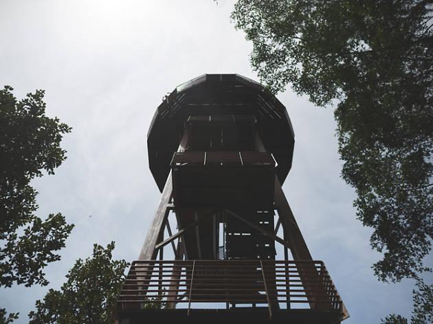 Jejawi Tower at Chek Jawa