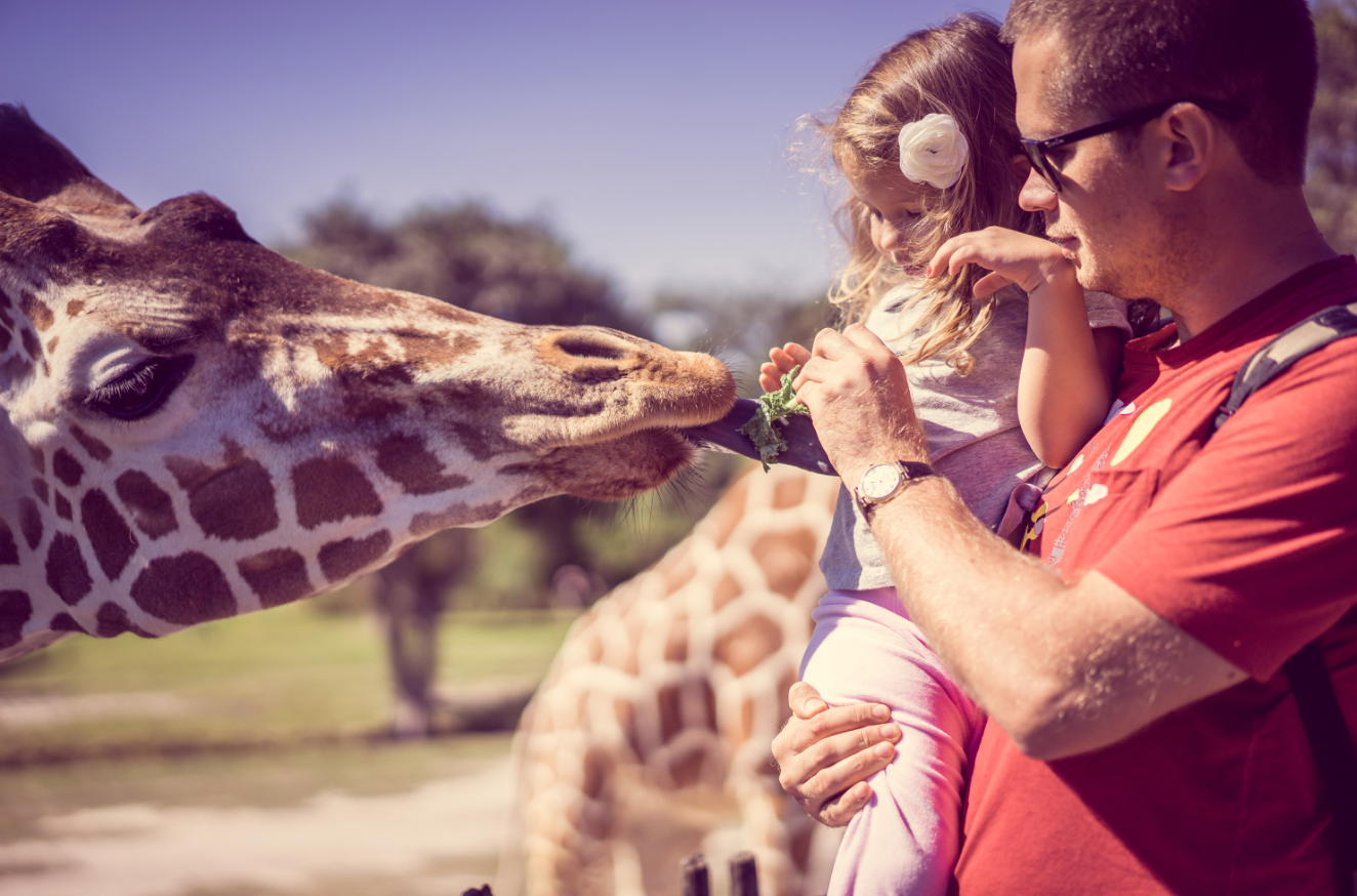 famille zoo