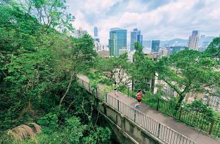 Wan Chai Green Trail