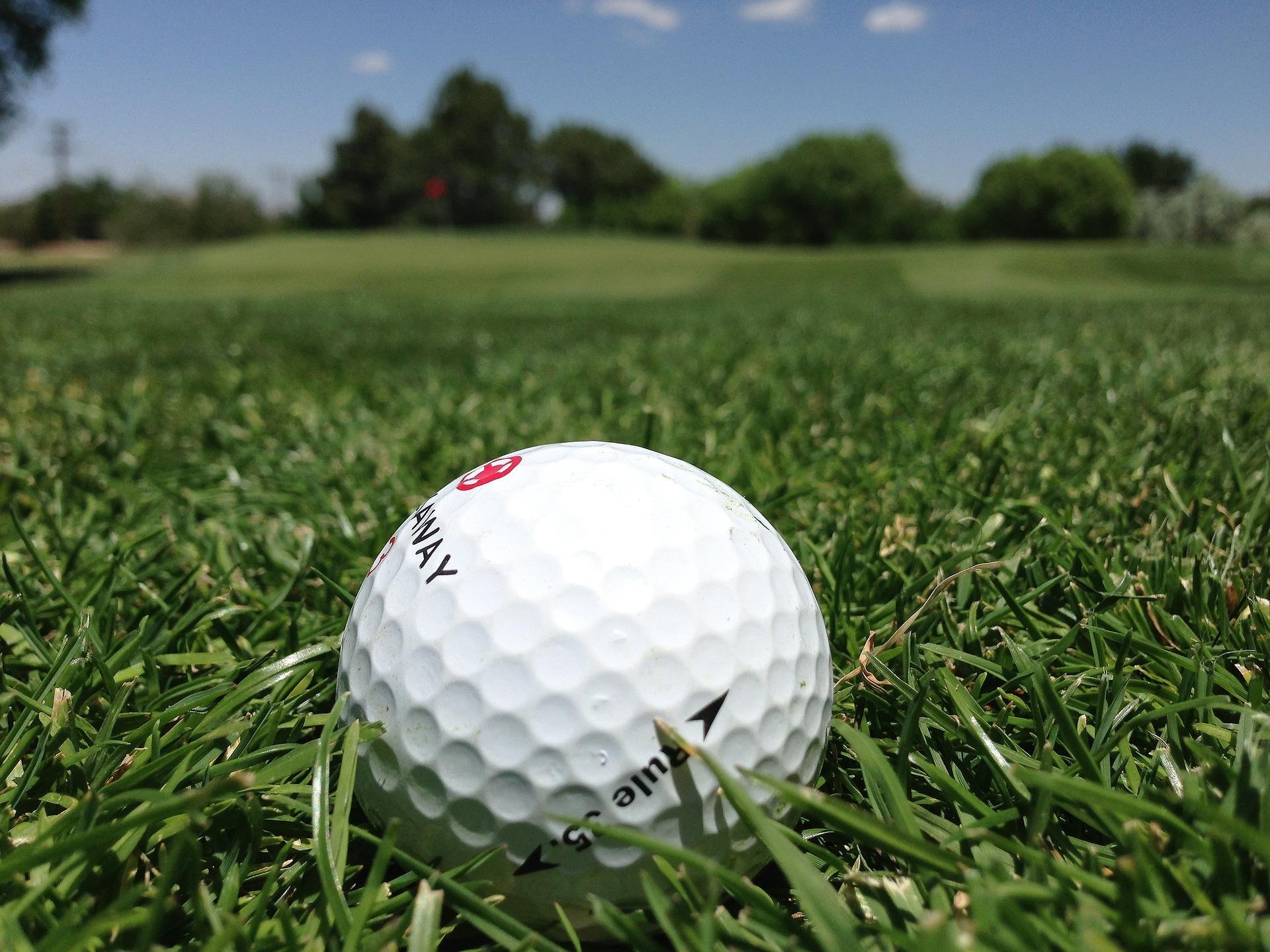 Golf ball stock