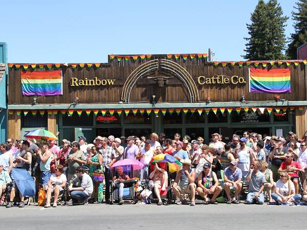 Rainbow Cattle Co.