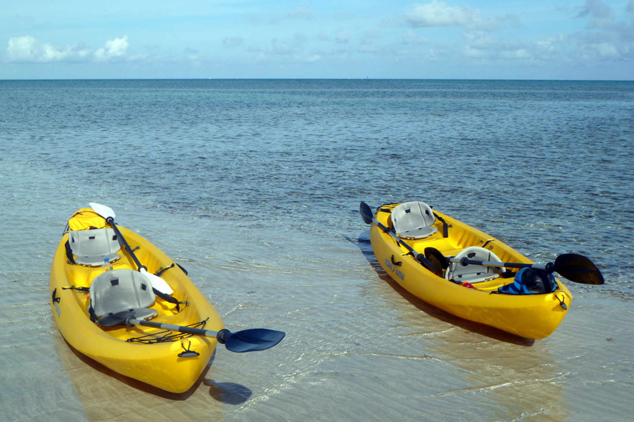 Key Biscayne kayak adventure tour