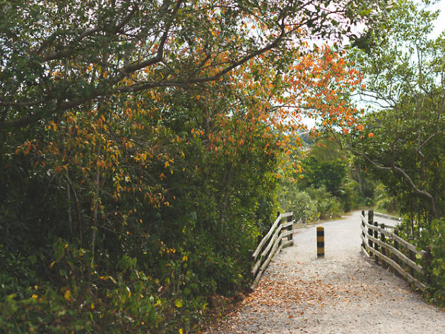 Fence and bollard on the Sensory Trail