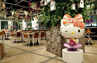 Hello Kitty Orchid Garden