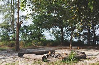 Jelutong campsite, Pulau Ubin
