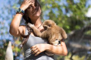 (Photograph: Courtesy Zoological Wildlife Foundation)