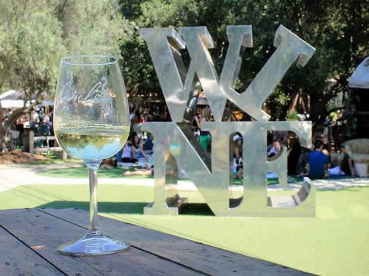 Clink glasses at Malibu Wines