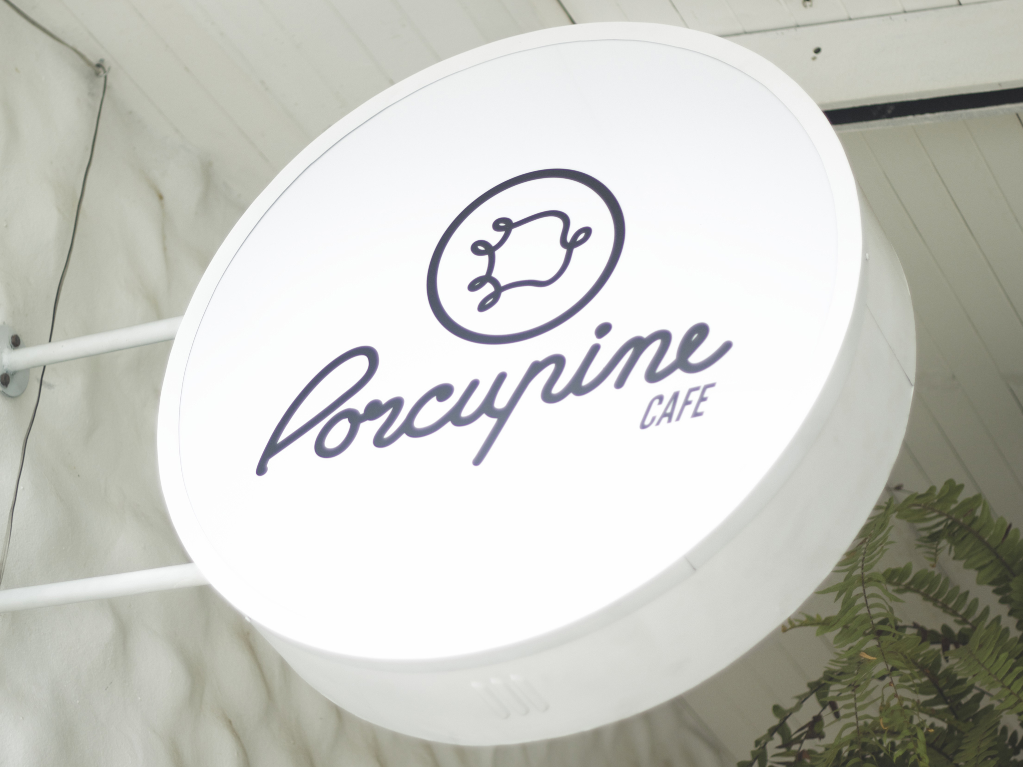 Porcupine Cafe great coffee and a wide range of tasty desserts