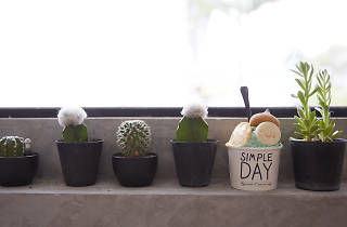 simple day 02