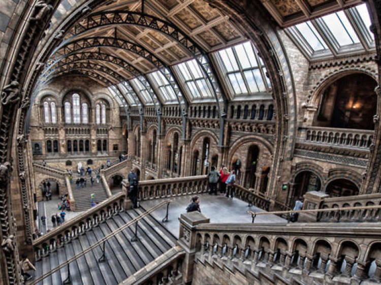 Find museums and galleries with no entry fee