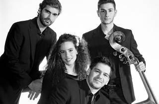 Cuarteto de contrabajos Bottesini