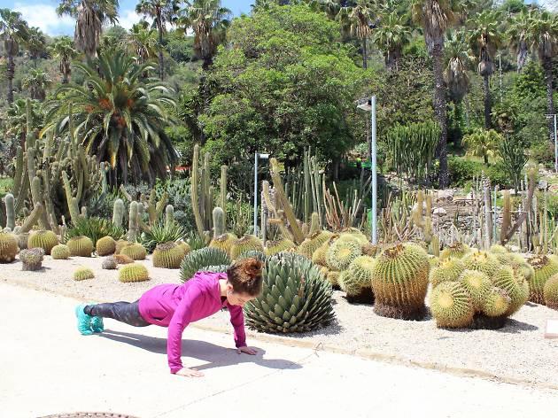 Jardins de Costa i Llobera