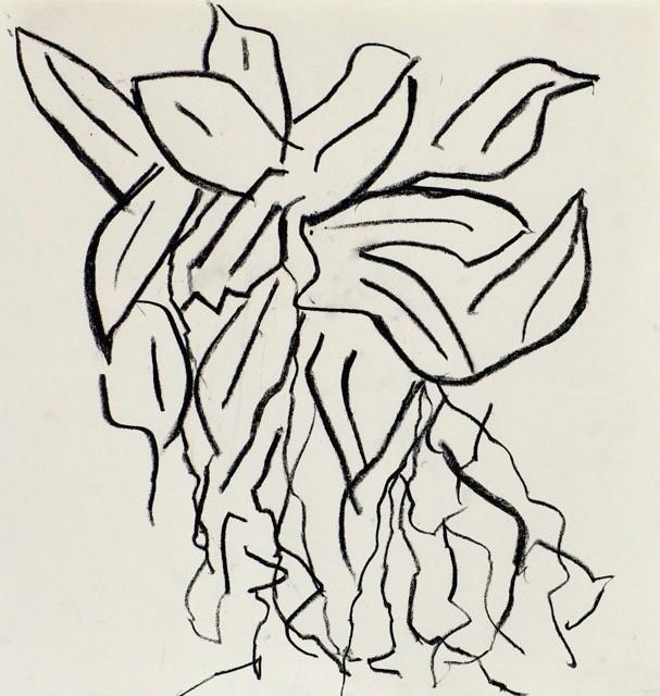 La sève du feuillage ne s'élucide qu'au secret des racines