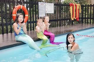 Syrena Mermaid School