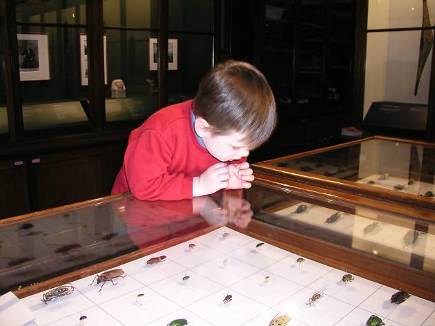 School Holiday Activities at Sydney University Museums