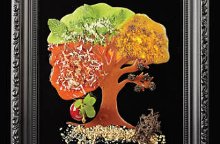 Framed artwork of tree made of edible ingredients