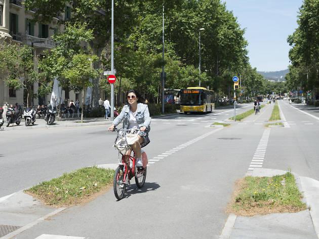 Ruta bicing