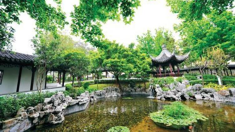 Shot of Kowloon Walled City Park Pond