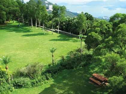 Shot of grassy area in Victoria Peak Garden