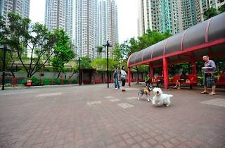 Shot of open area at Cheung Wan Street Rest Garden