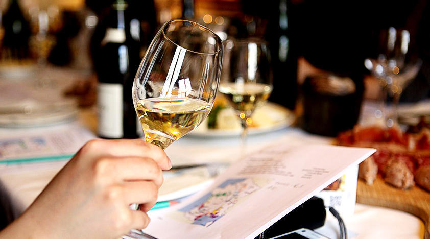 Wine Tasting Class – Barcelona Wine and Beer Experience