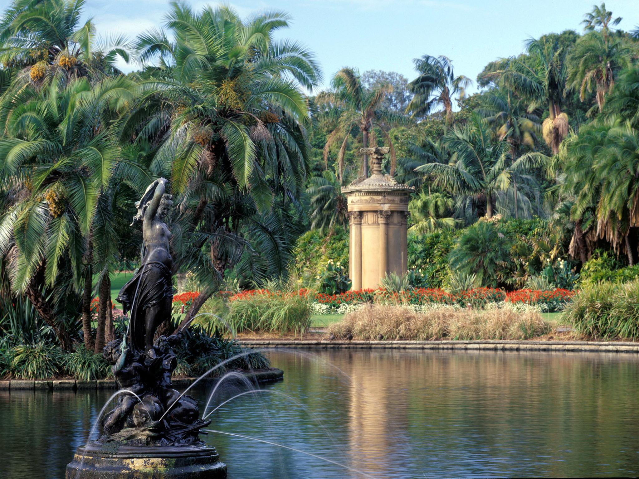 Venus in Pond at Royal Botanic Gardens, Sydney