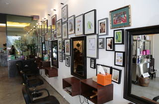 EVO Hair Gallery