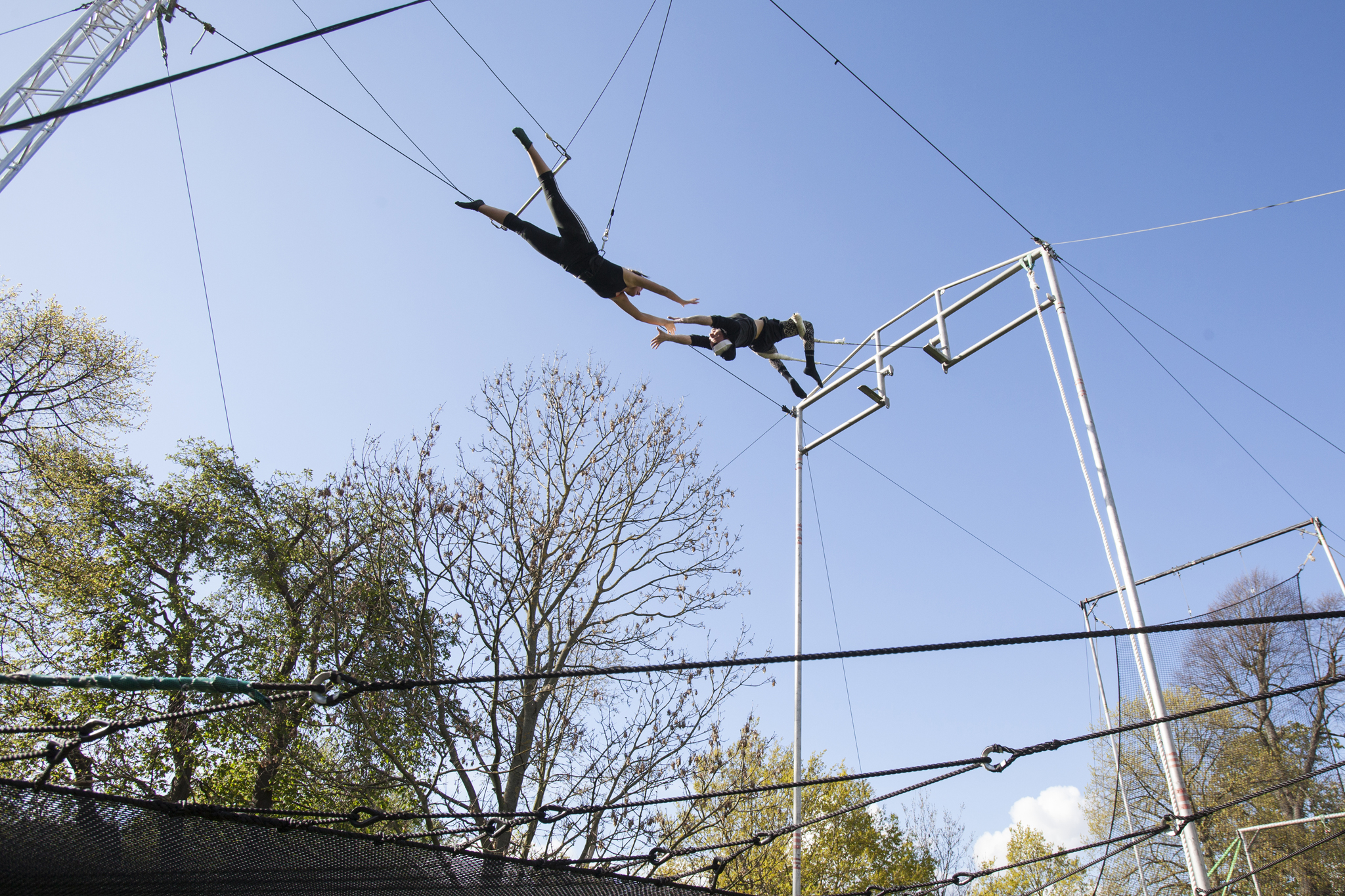 Flying Trapeze at Gorilla Circus