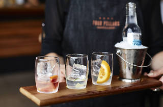 Four Pillars Gin