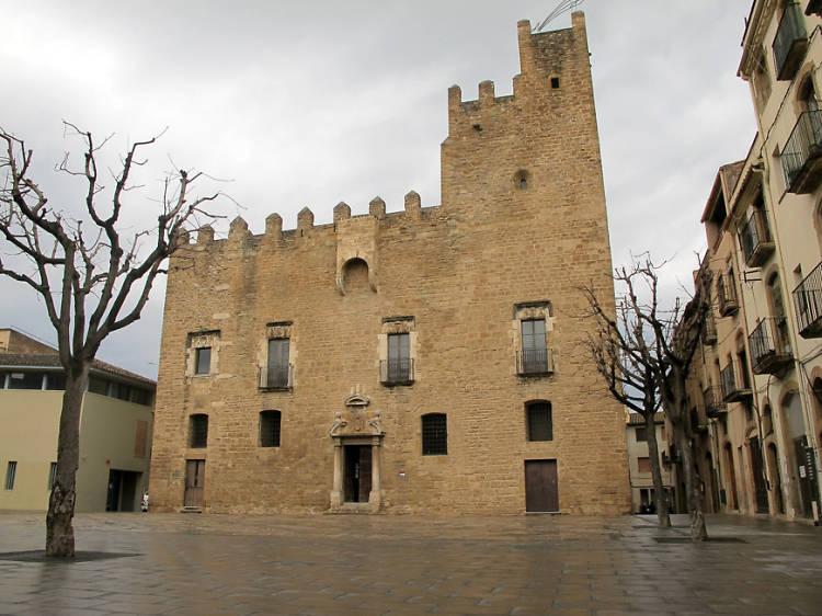 Castell Palau dels Bisbes de Girona