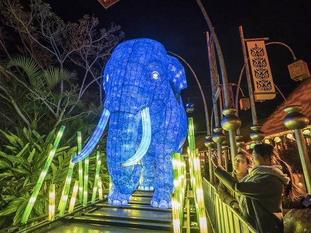 Elephant light work at Taronga Zoo
