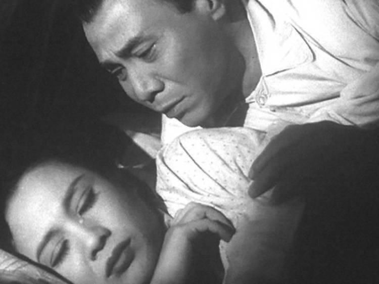 Cold Nights 寒夜 (1955)