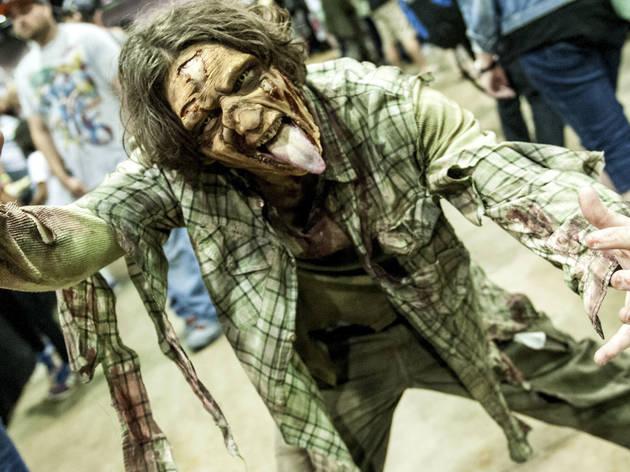 Walker Stalker Con 2016