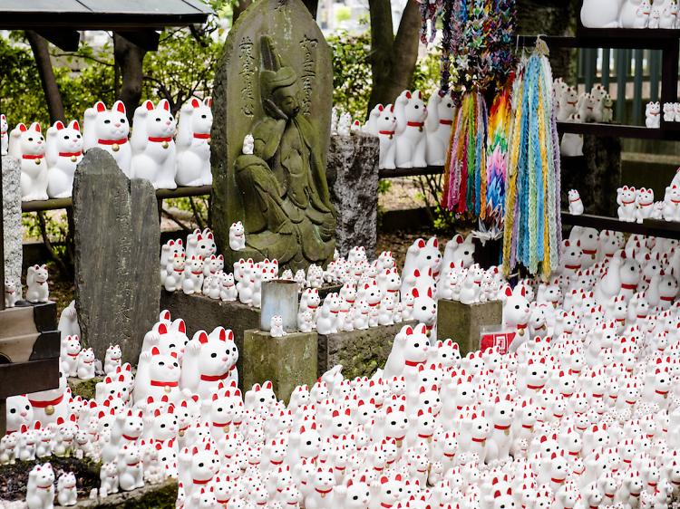 金運アップ、東京の神社仏閣10選