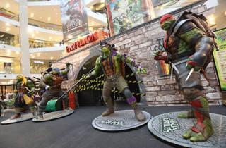 Teenage Mutant Ninja Turtles Pow Wow