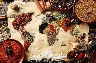 dünya yemekleri