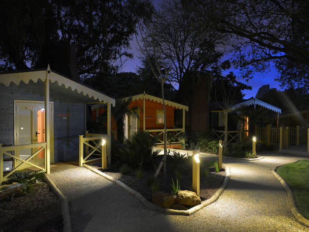 Experience late-night animal magic at London Zoo