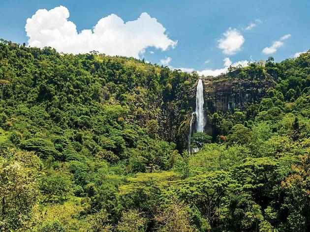 Bambarakanda Falls