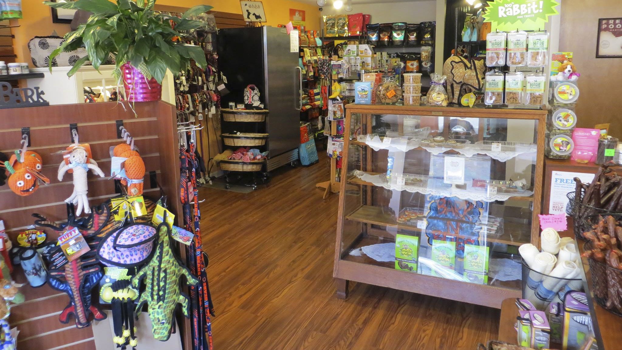 Pet stores in chicago for dog leashes cat collars and more for Top ten boutiques