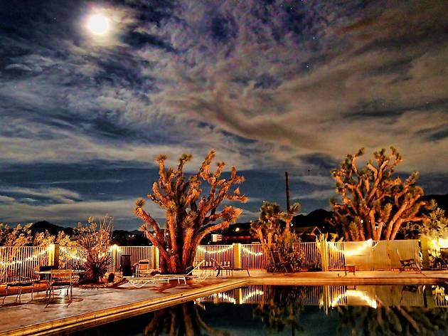 The best Joshua Tree hotels
