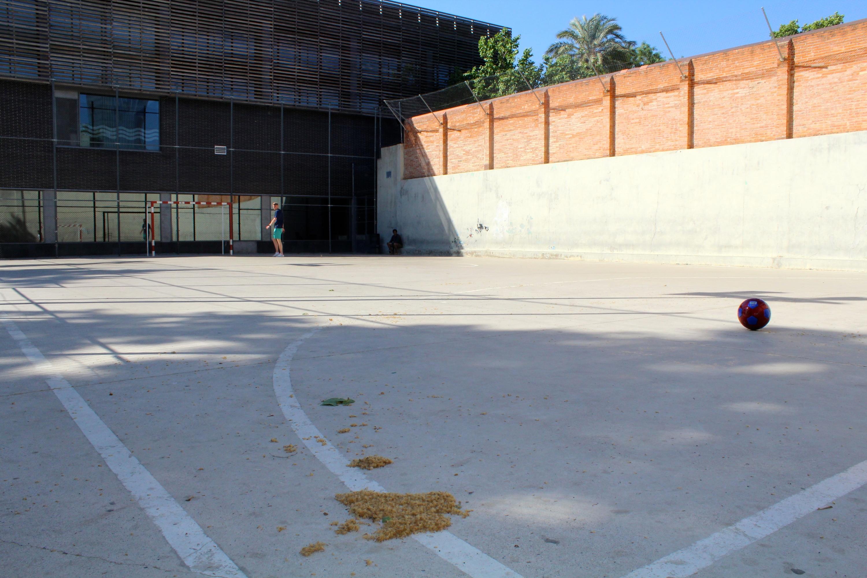 Camp de futbol Carlota Martí