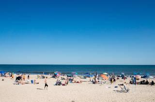 Hamptons, NY