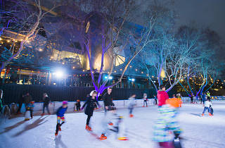 River Rink in Fed Square