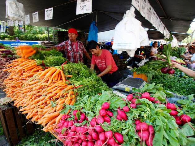 NYC farmers' markets